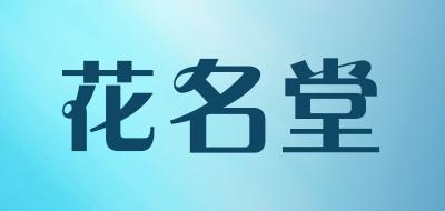 花名堂芦荟盆栽