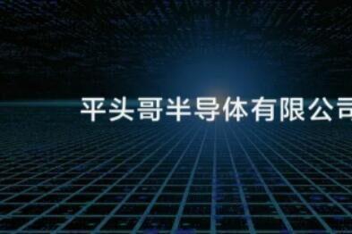 """阿里巴巴成立一家半导体公司,名字为""""平头哥""""-1"""