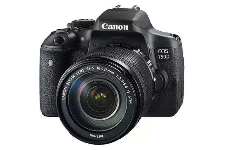 佳能入门单反相机哪款好?佳能哪款单反相机性价比高?-2