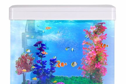 【鱼缸知识百科】——新鱼缸开缸图文教程-1