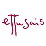 Ettusais品牌标志LOGO