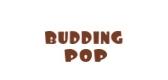 buddingpop苹果保护套
