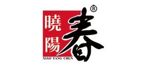晓阳春崂山绿茶